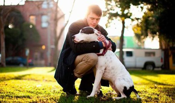 Image result for dog and human