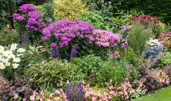 Alan Titchmarsh Have Your Beds And Borders Seen Better
