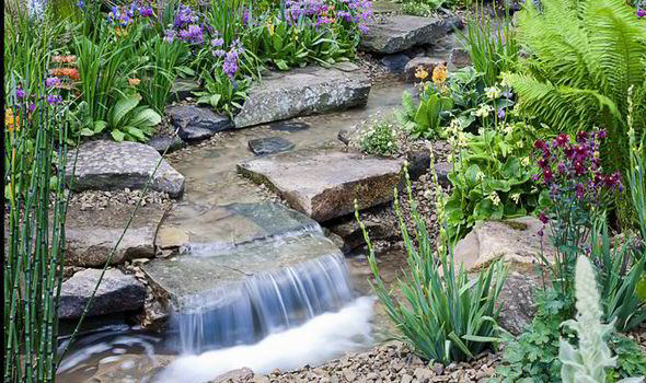 Landscaping Ideas Around Small Pond