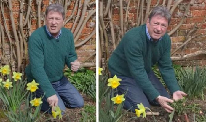 Alan Titchmarsh on dealing with annual and perennial weeds - 'don't compost them!'