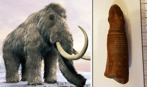 Woolly Mammoth Pictures Color
