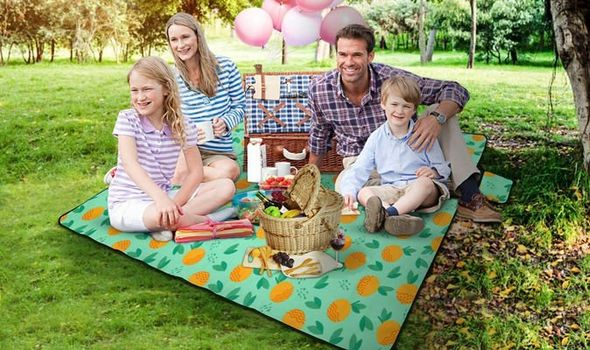 Family enjoying a picnic on a large blanket