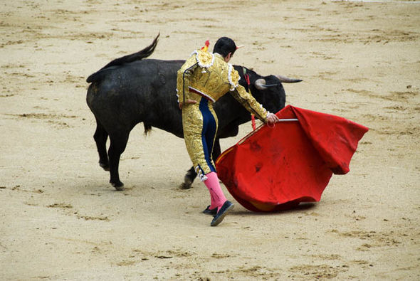 Death of second Spanish matador in less a year calls for ...