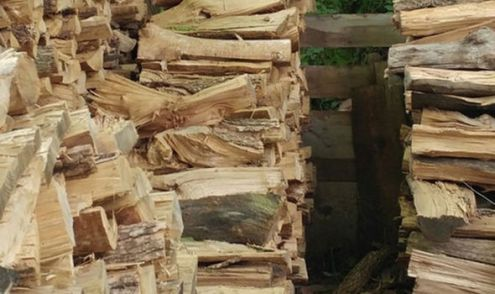 Picture of a pile of logs goes viral after internet notices THIS     top pic6