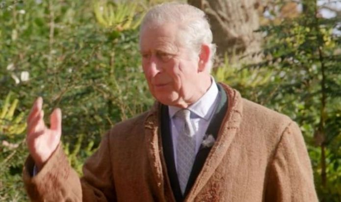 'Pompous' Prince Charles compared to 'Dumbledore' as future king appears in new video