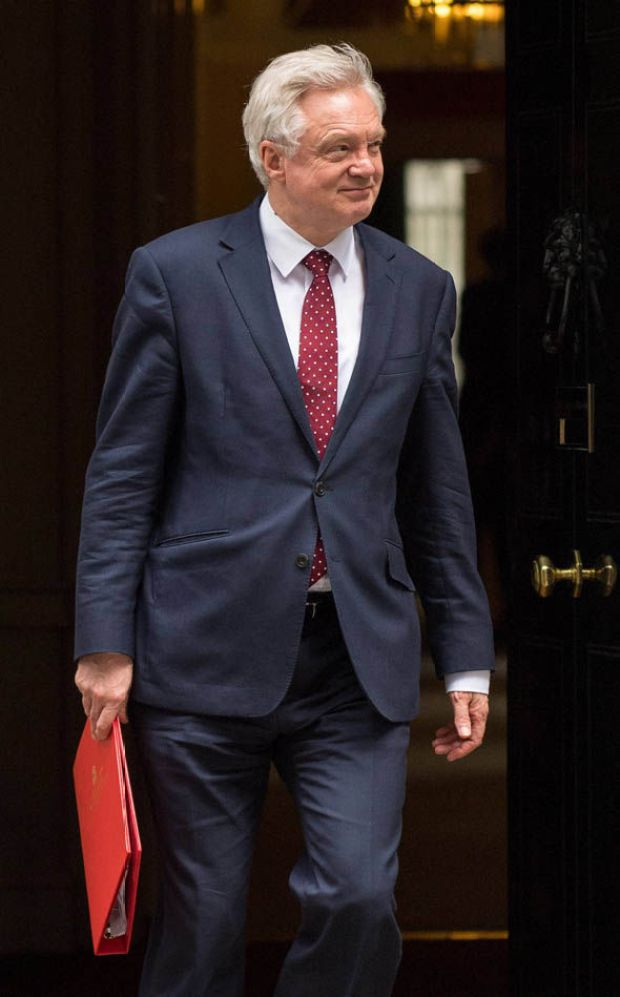 David Davis outside Downing Street after meeting at Number 10