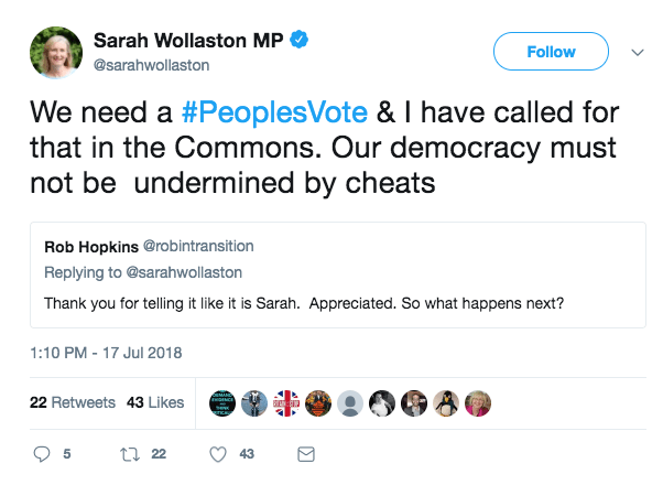 """Tory MP Sarah Wollaston calls for referendum again """"title ="""" Tory MP Sarah Wollaston is calling for another referendum"""
