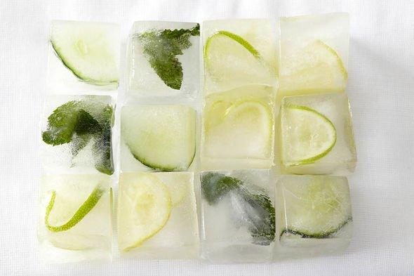 Can you freeze lemons: Lemons and ice