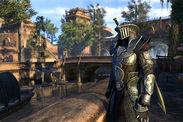 The Elder Scrolls Online Morrowind ESO Homestead servers