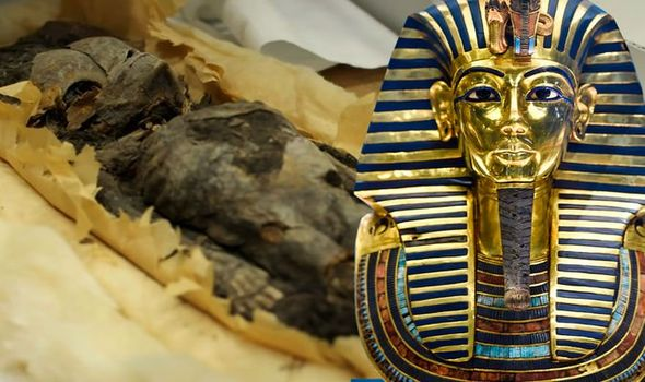 Ancient Egypt: The two mummified remains were found to be King Tut's stillborn daughters