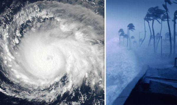 Hurricane Irma wind speeds mapped: Interactive chart shows ...