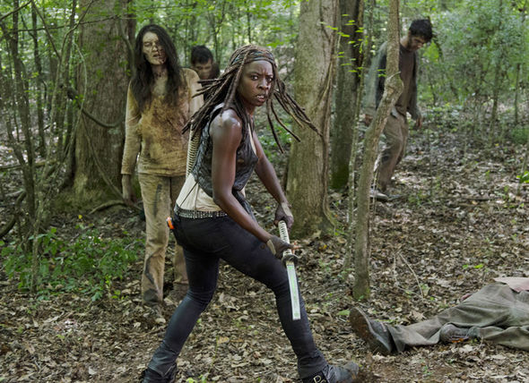 Michonne fighting Walkers