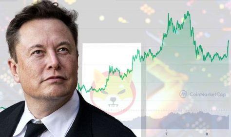 Shiba Inu price prediction: Crypto needs to TRIPLE surge rate to hit $1 - Expert analysis