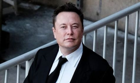 Elon Musk: The THREE questions investors should ask as Tesla CEO prompts SHIB surge