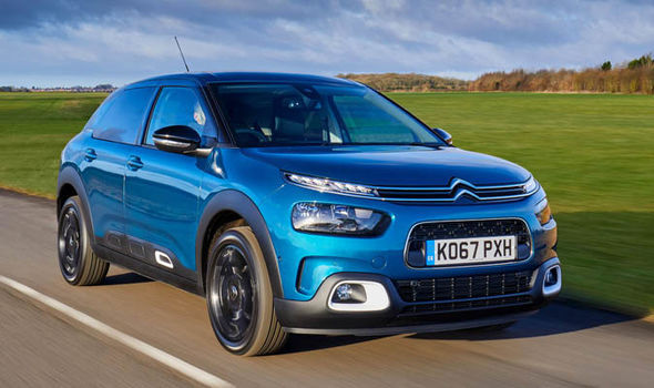 New C4 cactus is easier on the eye