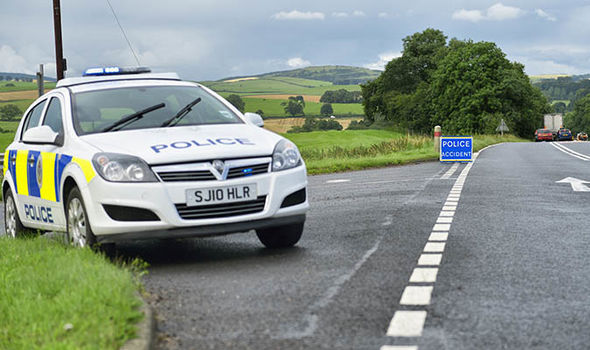 Police officer roadside
