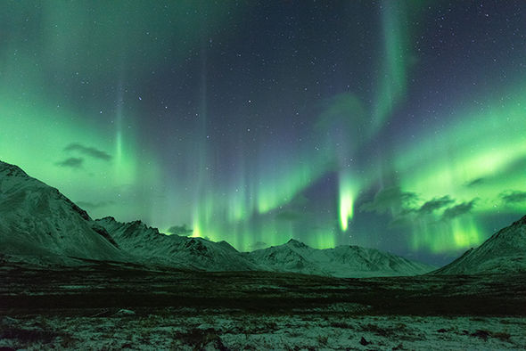 aurora northern lights borealis yukon canada