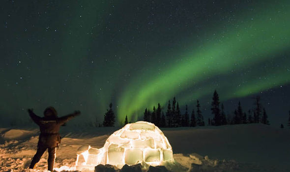Northern Lights: A trip to light up your lives | Travel ...