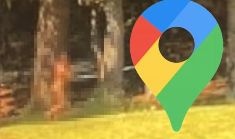 Google Maps Street View: Users left baffled by 'mysterious naked Big Foot'