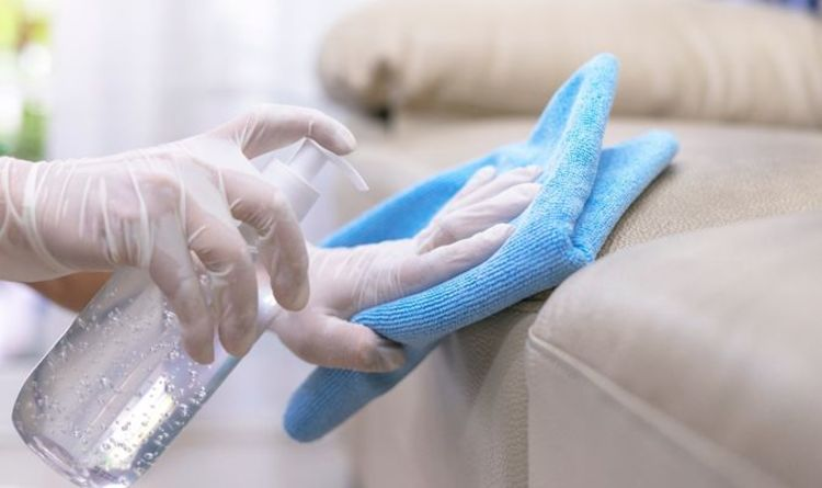 Cleaning: Mrs Hinch fans share easy sofa cleaning tips for leather or fabric
