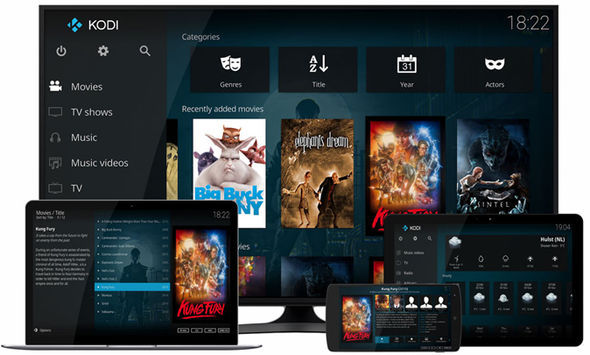 The Kodi media player software works across a broad range of devices