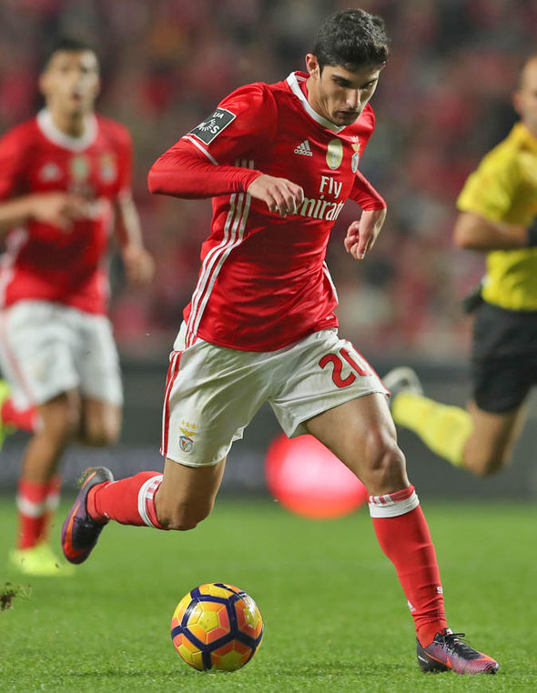 Goncalo Guedes at Benfica