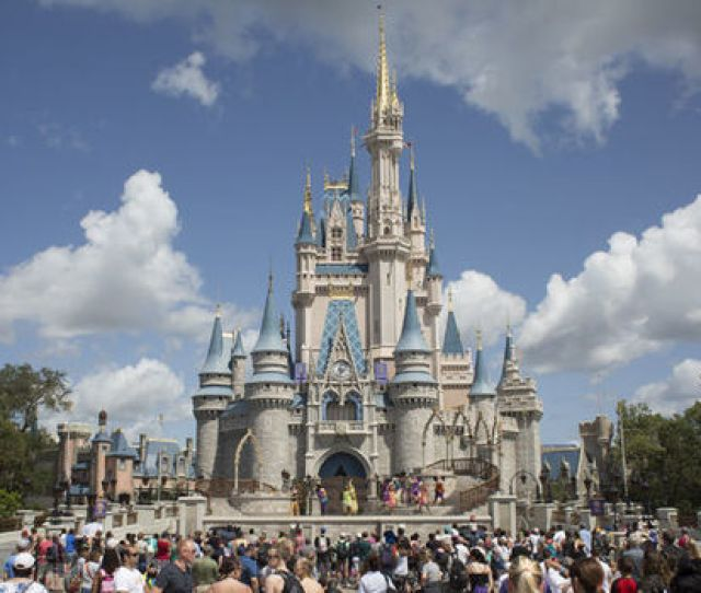 Disney World Death Horror As Body Found In Blazing Car At Florida Theme Park World News Express Co Uk
