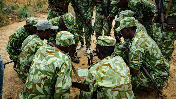 Terror elephant ivory Africa Boko Haram Al Shabaab British Army poaching