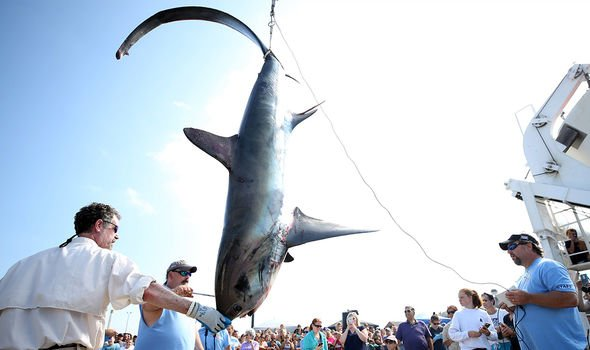 There are concerns about overfishing
