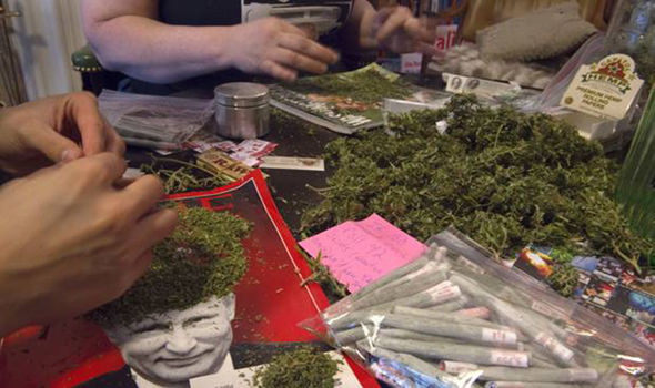 marijuana giveaway