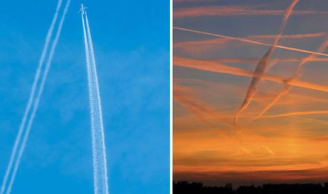 Dr Horowitz claims contrails like these contail harmful chemicals on purpose.