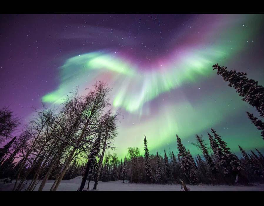 Northern Lights Fairbanks Alaska