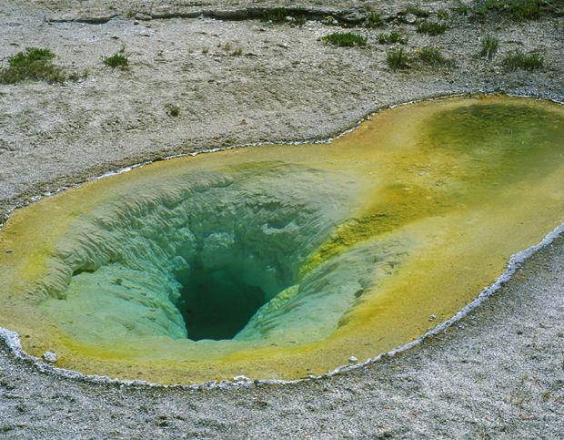 Belgian Pool, hot spring in the Upper Geyser Basin of Yellowstone National Park, Wyoming