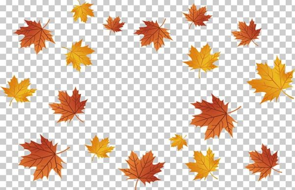 fall leaves png # 4