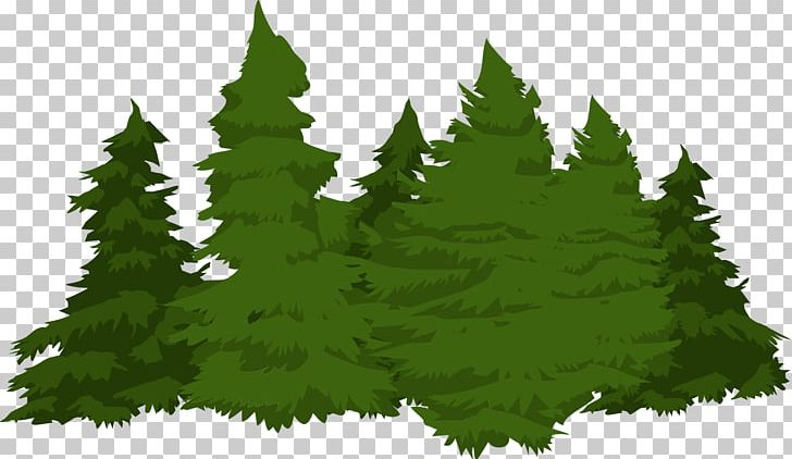 Ai eps png tree draw conifer download dxf bonsai flora fun plant drawing branch leaves lovers nature love file art cutting vectors vectorized stylized painted coniferous more listed on may 23, 2021 66 favorites report this item to etsy. Forest Pine Conifers Png Clipart Biome Christmas Tree Conifer Conifers Evergreen Free Png Download