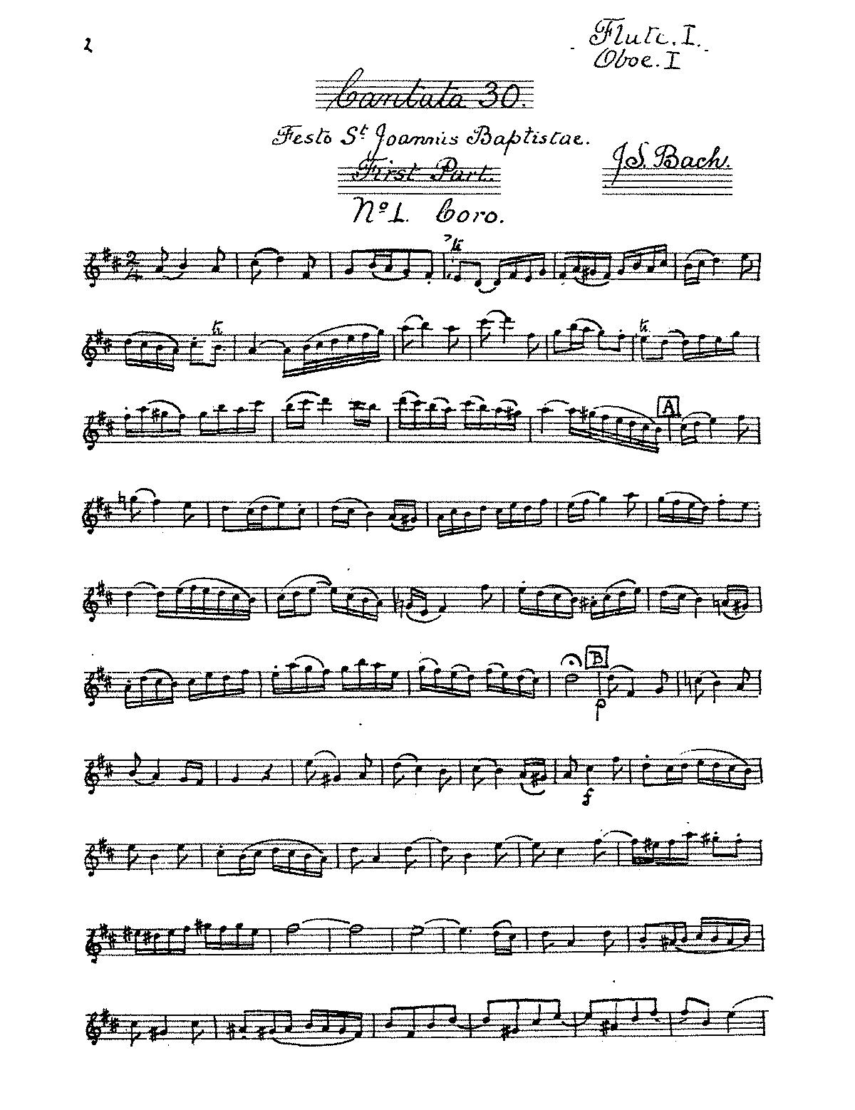 Freue Dich Erloste Schaar Bwv 30 Bach Johann Sebastian