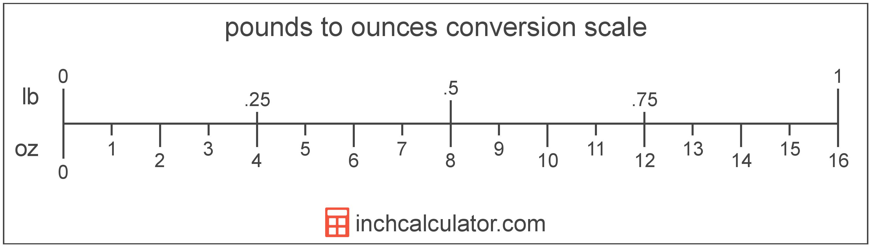 31 Factor Label Method Conversion Calculator