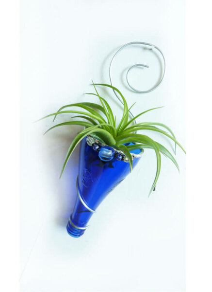 Air plant holder -Recycled bottle sconce - Blue with Silver and beads