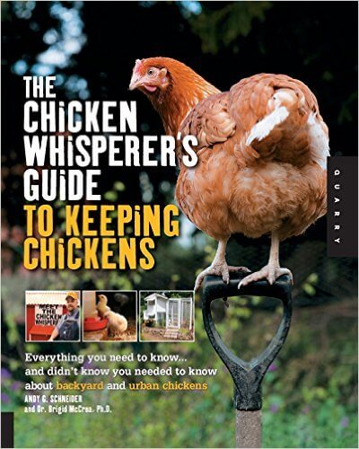 Chicken whisperer's guide