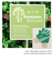 Humane backyard pledge & sign