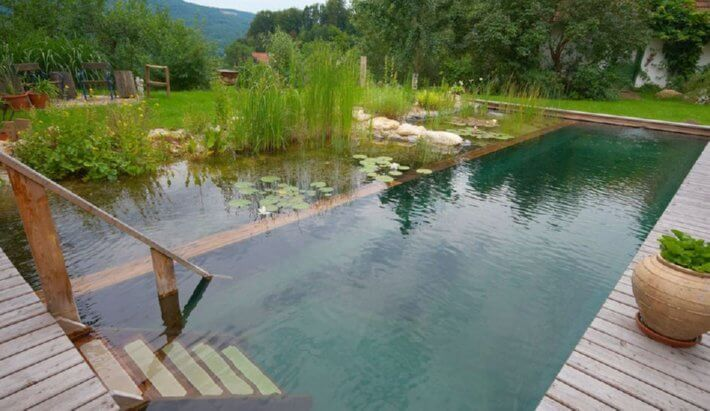 Artificial Outdoor Pond Plants