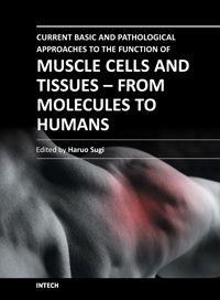 Current Basic and Pathological Approaches to the Function of Muscle Cells and Tissues - From Molecules to Humans