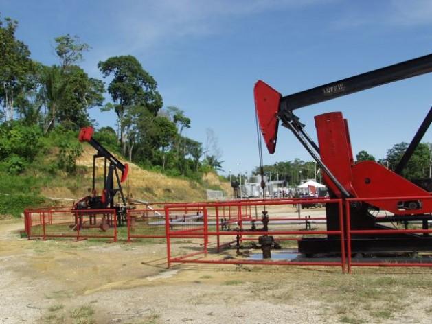 Petrotrin pumping jacks at its oilfields in Trinidad. Courtesy of Petrotrin.