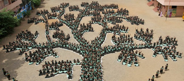 Education vital for healthy, productive ecosystems. One of UNEP's goals within an integrated ecosystem management framework is to foster the capacity of professionals and develop human capacity across all social strata and genders.  Credit: UNEP