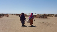 Pastoralists in Ethiopia carry butchered meat home. Photo: FAO