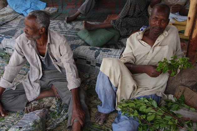 Men lounging in Dire Dawa's Chattara Market chewing khat, Ethiopia. Credit: James Jeffrey/IPS