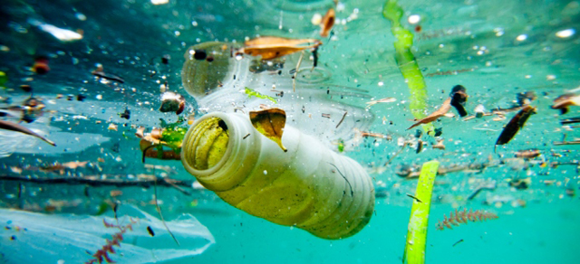 Biodegradable Plastics Are Not the Answer to Reducing Marine Litter. Credit: UNEP