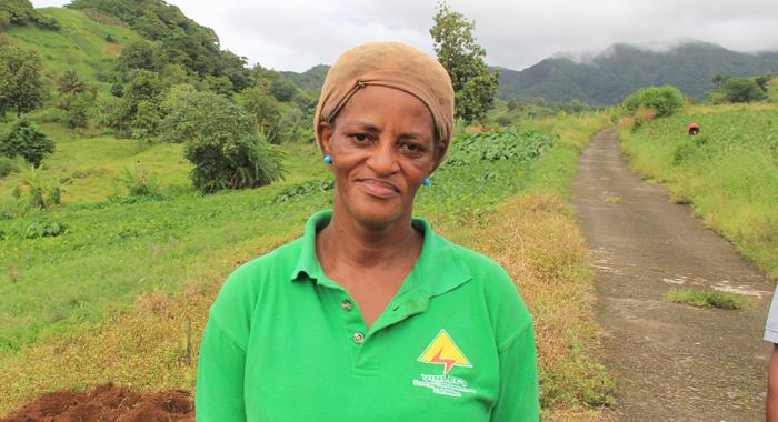 Dasheen Farmer, Gwendolyn Cottoy. (Iwn Photo)