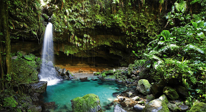 A Small Dominican Waterfall And Swimming Pool.