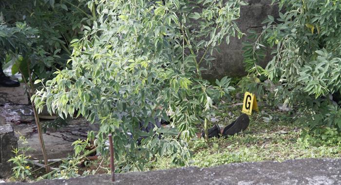 Kamari Neptune Murder Scene 5